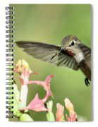 In For A Landing  Spiral Notebook