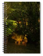 In Golden Moments Of Reflection Spiral Notebook
