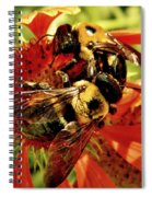 In It Together Spiral Notebook