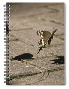 In Mid-air  Spiral Notebook