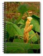 In My Garden  Spiral Notebook