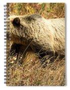 In Stride Spiral Notebook