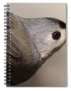 In Style Spiral Notebook