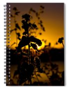 In Sunset's Glow Spiral Notebook