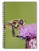 In The Bloom Spiral Notebook