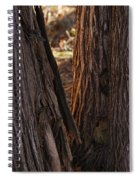 In The Cedars Spiral Notebook
