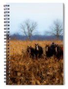 In The Corn 1 Spiral Notebook