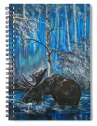 In The Still Of The Night Series 1 Spiral Notebook
