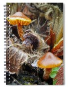 In The Strawberry Patch  Spiral Notebook