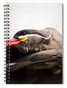 Inca Tern Spiral Notebook
