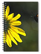 Incoming Monarch Spiral Notebook
