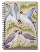 India: Pheasants Spiral Notebook