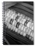 Indian Corn Black And White Spiral Notebook