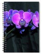 Indigo Mystique Orchids  Spiral Notebook