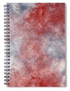 Inkheart Spiral Notebook