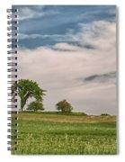 Innisfree Tree 15203c Spiral Notebook