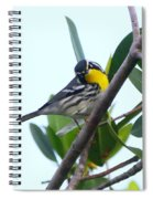 Inquisitive Yellow Throated Warbler Spiral Notebook