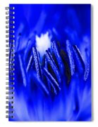 Inside A Flower Spiral Notebook