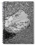 Inspired Mytallique Spiral Notebook