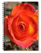 Intense Rose Spiral Notebook