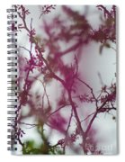 Inter-vined Spiral Notebook