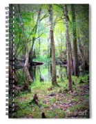 Into The Swamp Spiral Notebook