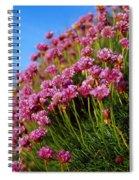 Ireland Close-up Of Seapink Wildflowers Spiral Notebook