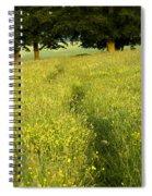 Ireland Trail Through Buttercup Meadow Spiral Notebook