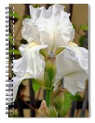 Iridescent Iris Spiral Notebook