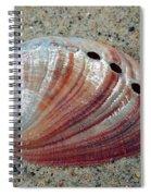 Iridescent Treasure Macro Spiral Notebook