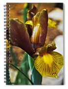 Iris After The Rain Spiral Notebook