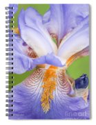 Iris Close Up Blue And Gold Spiral Notebook