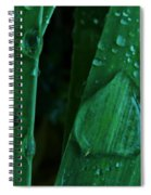 Iris Drops Spiral Notebook