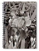 Iris Enhanced With Pencil Spiral Notebook