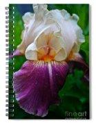 Iris Finery Spiral Notebook