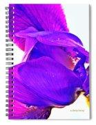 Iris Surprise  Spiral Notebook
