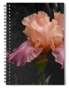Iris2 Spiral Notebook