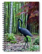 Iron Crane Poses 1 Spiral Notebook