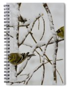 Is It Snowing On Your Side Spiral Notebook