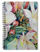 Islands Beauties Spiral Notebook