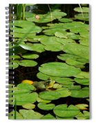 It Is Not Easy Being Green Spiral Notebook