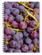 Italian Red Grape Bunch Spiral Notebook