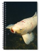 Its Bug Time Spiral Notebook