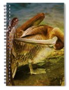 It's Cleaning Day By Pelicans Spiral Notebook