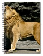It's Good To Be The King Spiral Notebook
