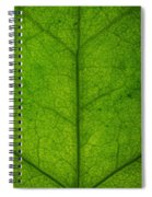 Ivy Leaf Spiral Notebook