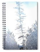 Jack Frost's Ice Forest Spiral Notebook