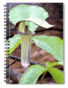 Jack-in-the-pulpit Spiral Notebook
