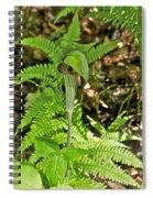 Jack-in The-pulpit_4588 Spiral Notebook