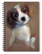 Jack Russell Terrier Dog Spiral Notebook
